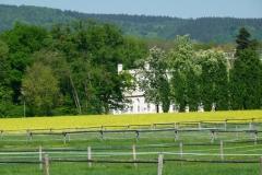 Malerisch eingebettet zwischen dem Oberurseler Ortsteil Oberstedten und dem Bad Homburger Ortsteil Dornholzhausen liegen die Koppeln des RVO