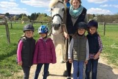Der Ponyclub: auf Du und Du mit dem Pferd